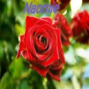 Consultatie met waarzegster Naomie uit Friesland